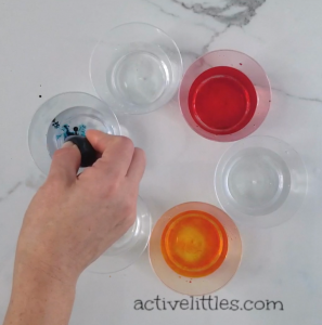 science experiment for kids using paper towel