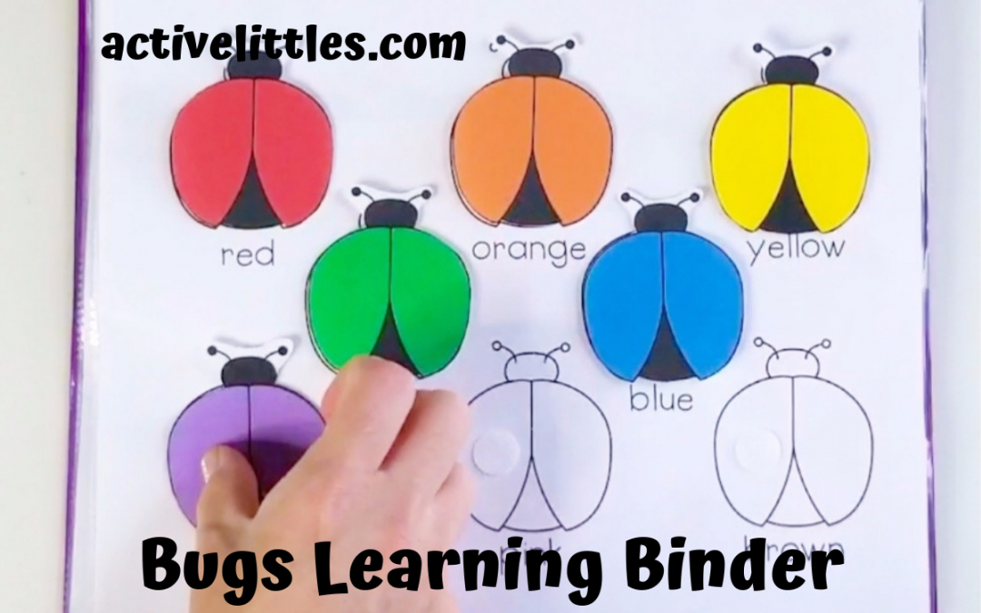 Bugs Interactive Activity Learning Binder for Preschoolers and Kids