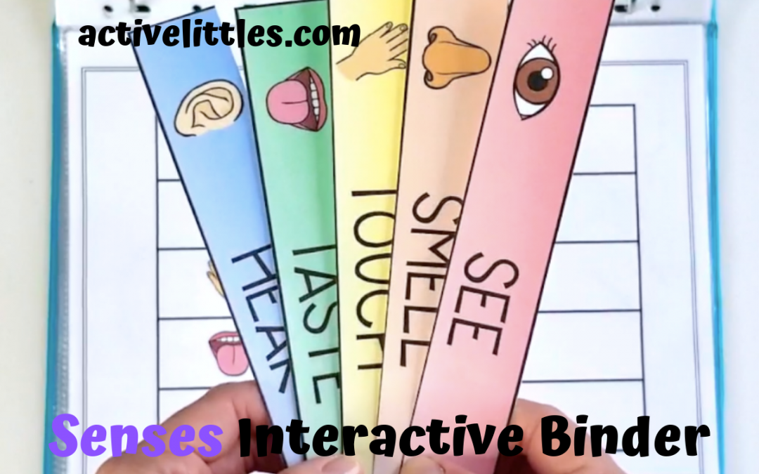 Senses Learning Activity Binder for Preschoolers and Kids