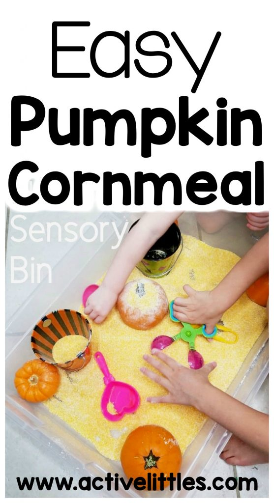 easy pumpkin cornmeal sensory bin