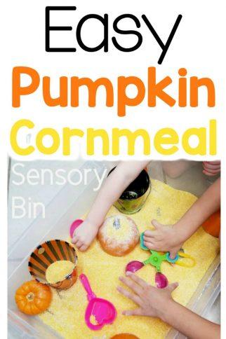 Easy Pumpkin Cornmeal Sensory Bin