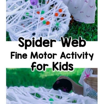 spider web fine motor activities