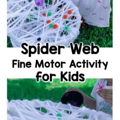 spider web fine motor activities