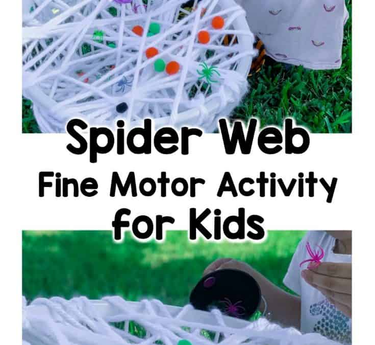 Spider Web Pick and Count Fine Motor Activity