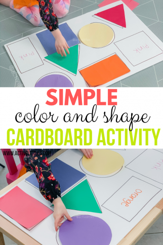 Simple Color Shape Cardboard Activity