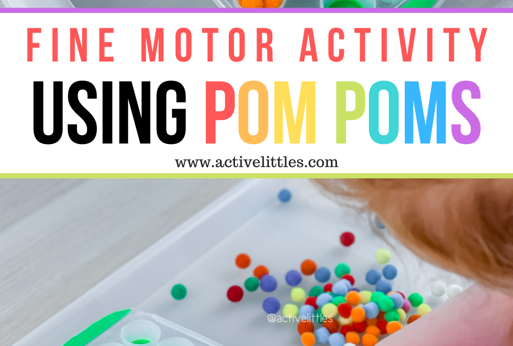 Simple Fine Motor Activity using Pom Poms