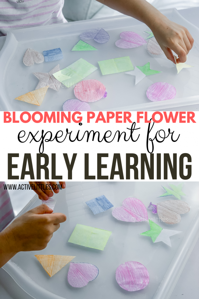 blooming flowers for early learning