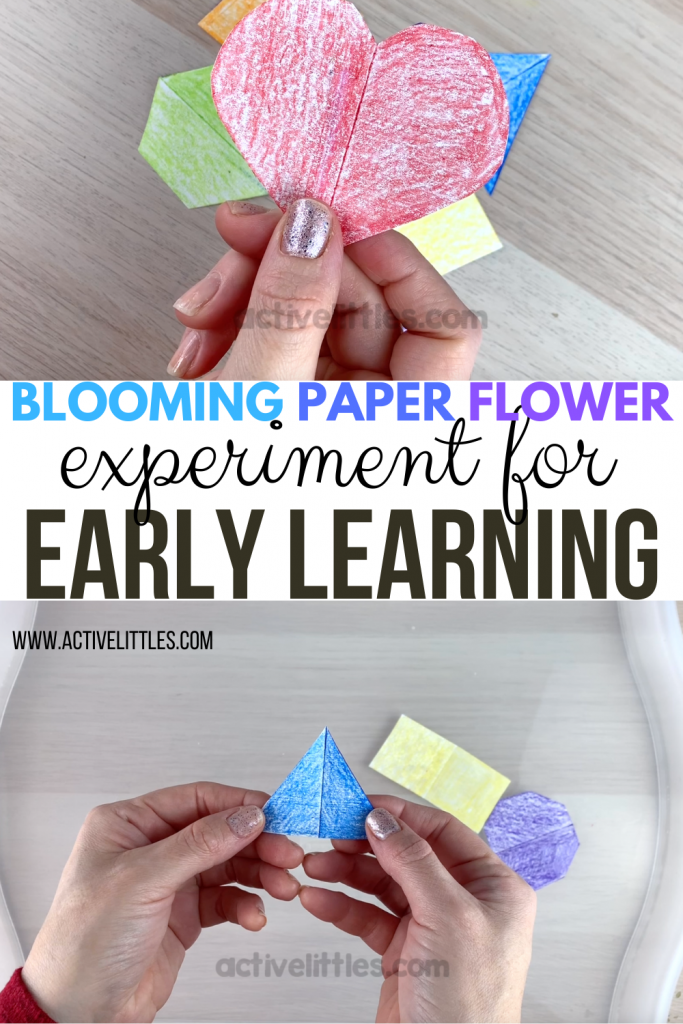 blooming flowers with an early learning twist