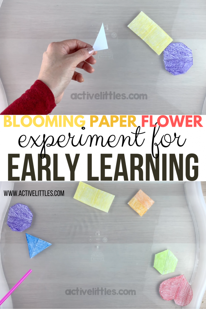 blooming flowers with an early learning twist to it