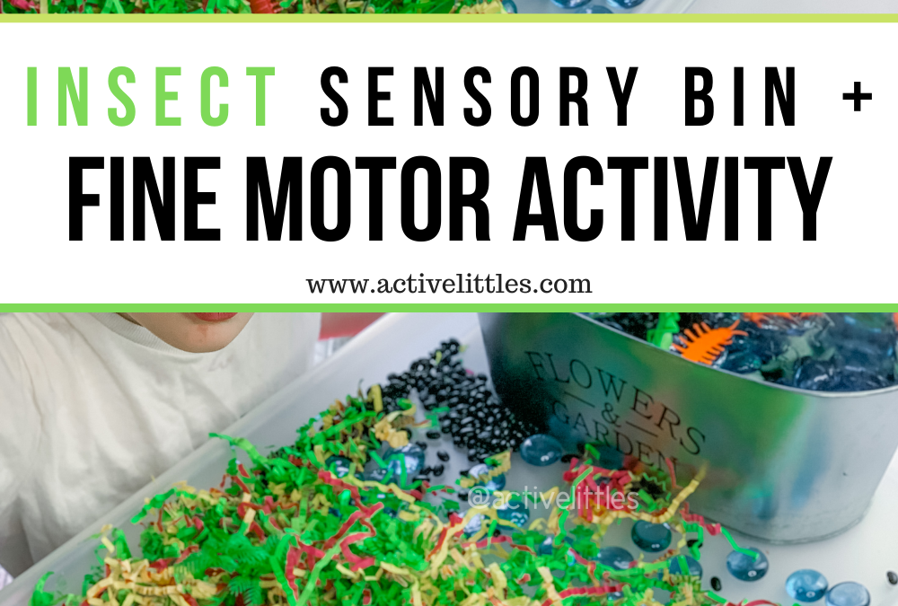 Insect Sensory Bin and Fine Motor Activity