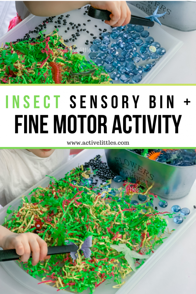bugs sensory bin for kids