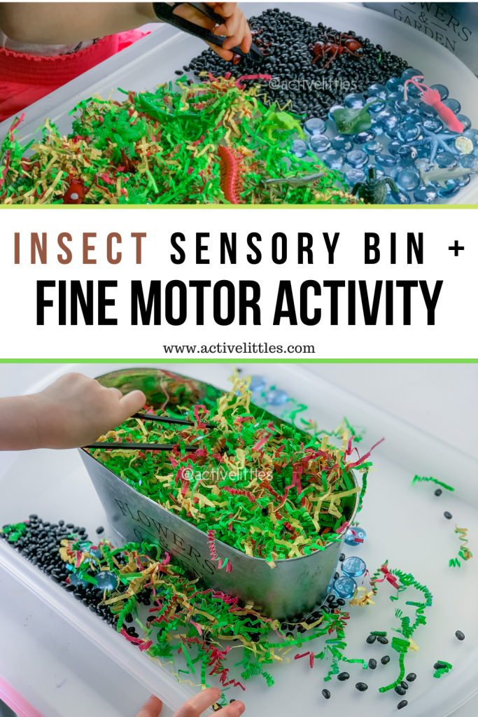 insects sensory bin for kids