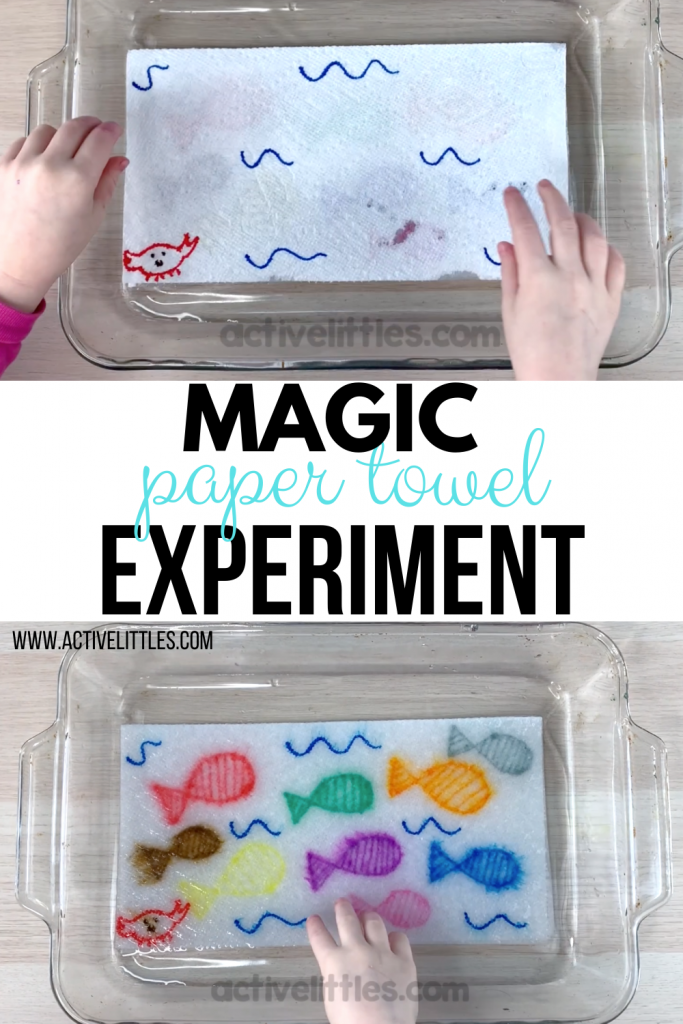 magic paper towel experiment