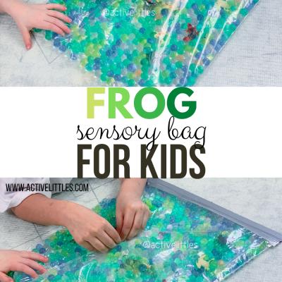 frog sensory bag for kids