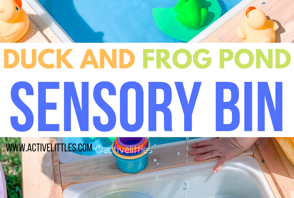 Duck and Frog Pond Sensory Bin for Toddlers and Preschool