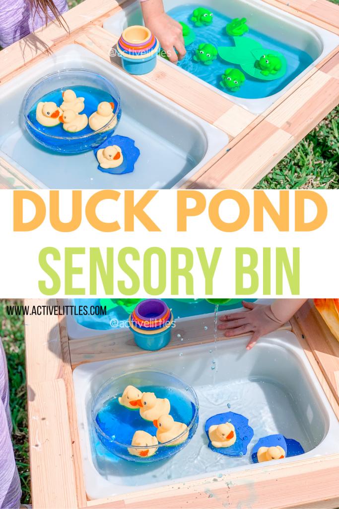 duck pond sensory bin for kids