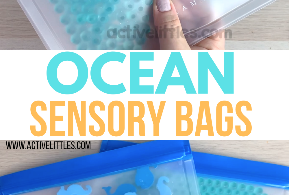 Ocean Sensory Bag for Toddlers and Preschoolers
