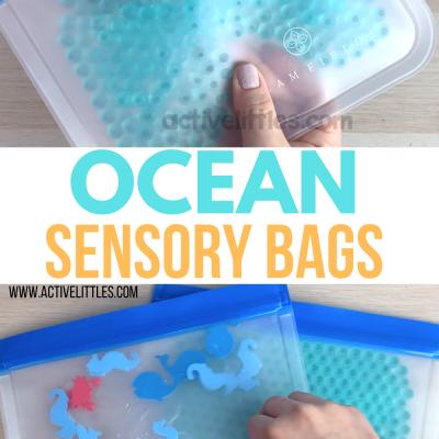 ocean themed sensory bag preschool