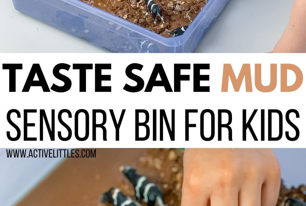Simple Taste Safe Mud Sensory Bin for Kids