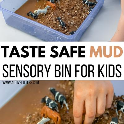 taste safe mud sensory bin