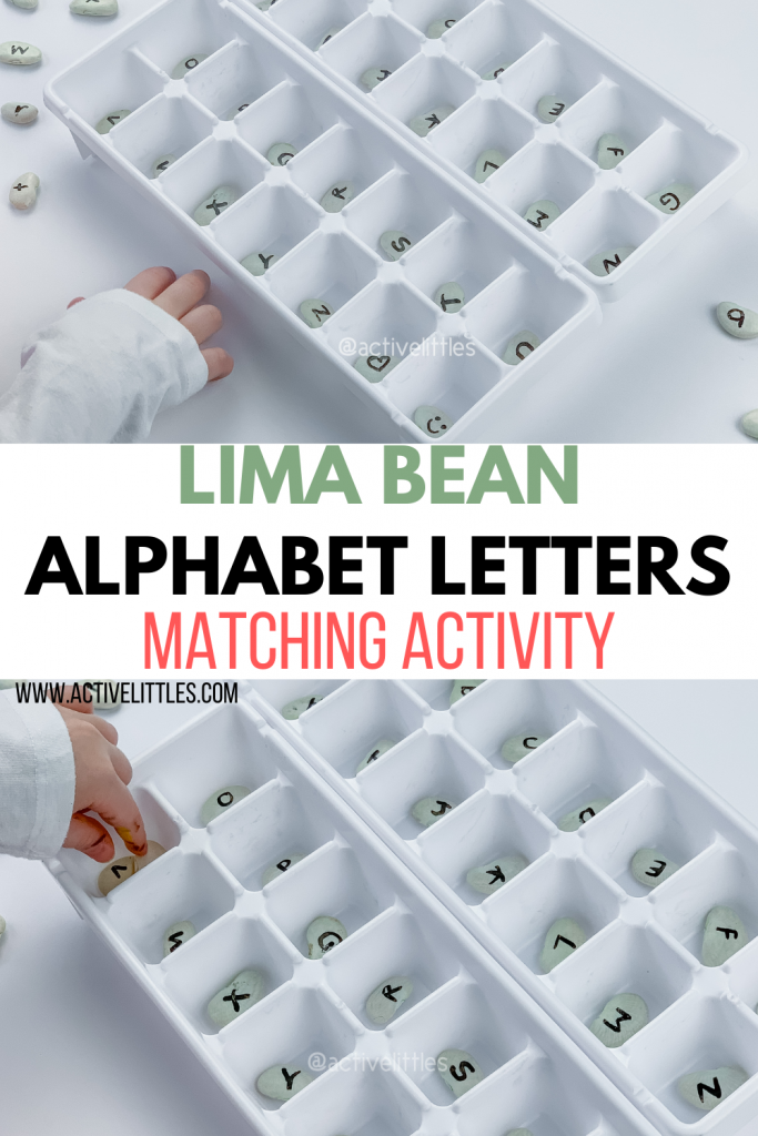 lima bean alphabet letter matching activity