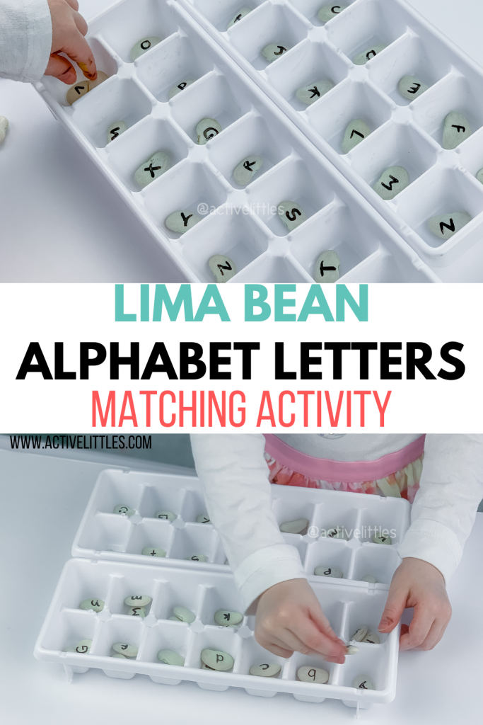 lima bean letter matching activity