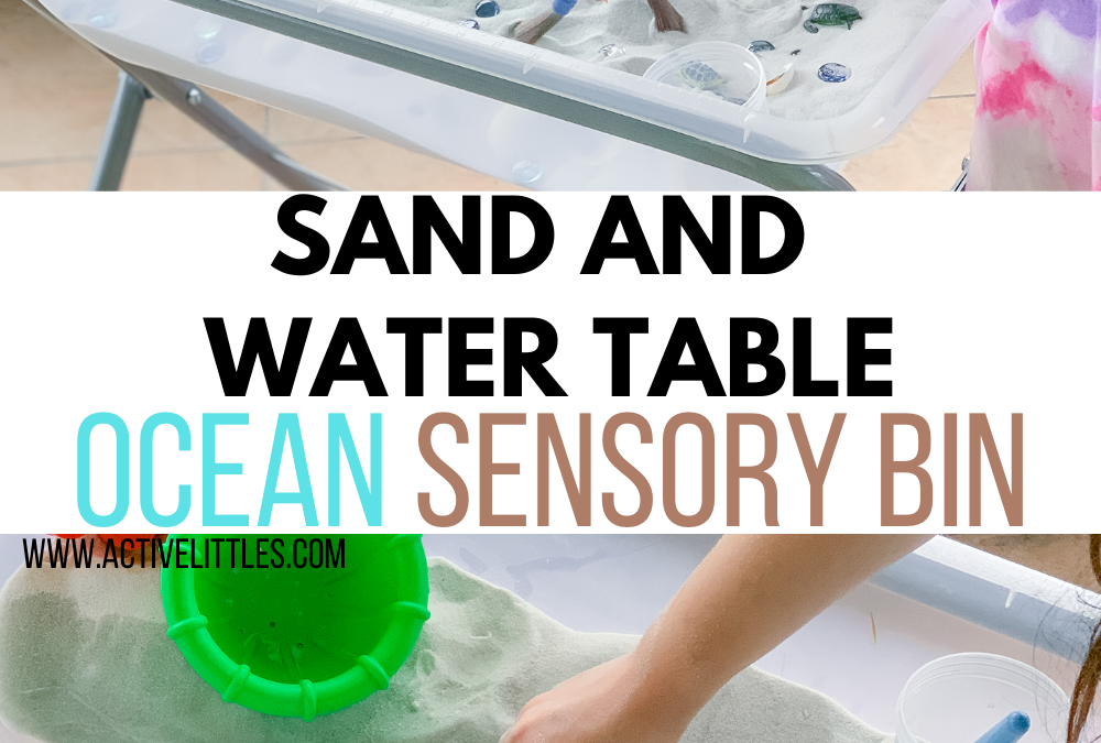 Sand and Water Table Ocean Sensory Bin