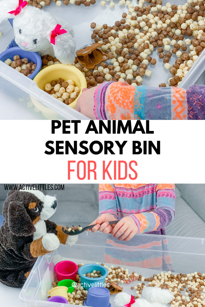 pet animal sensory bin for kids