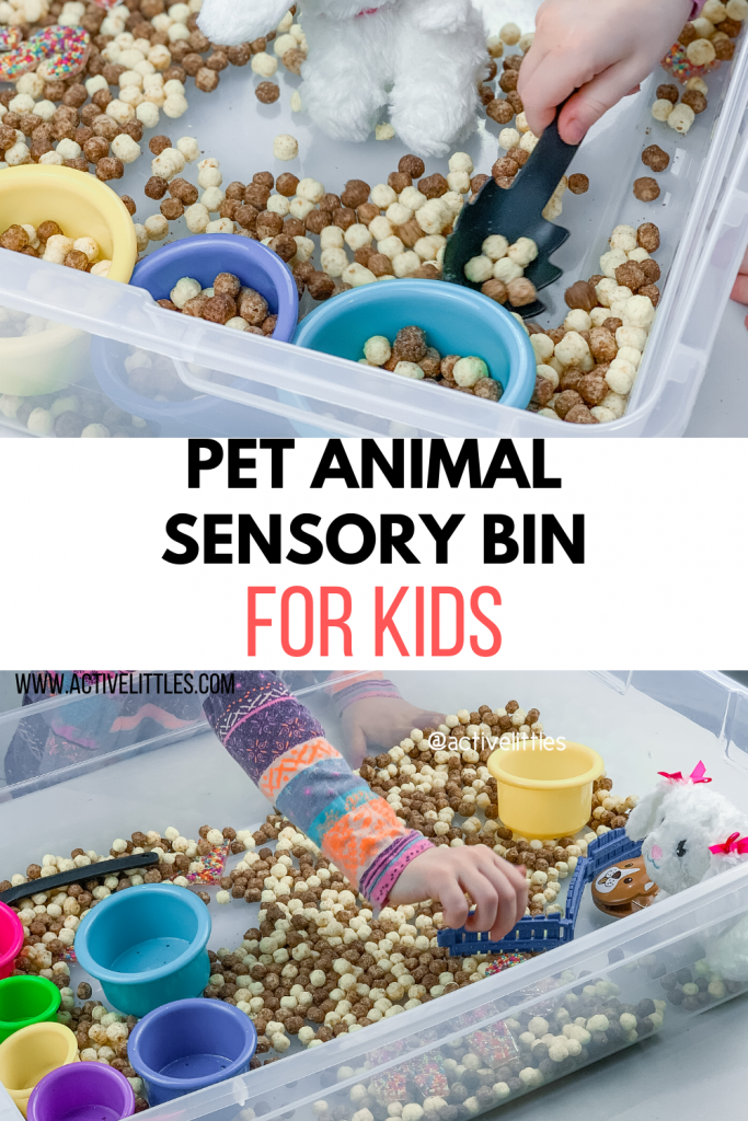 pet sensory bin for kids