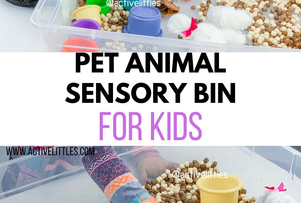 Pet Animal Sensory Bin for Kids