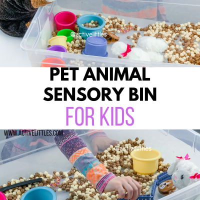 pet shop sensory bin for kids