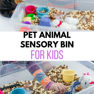 pet shop sensory bin for kids