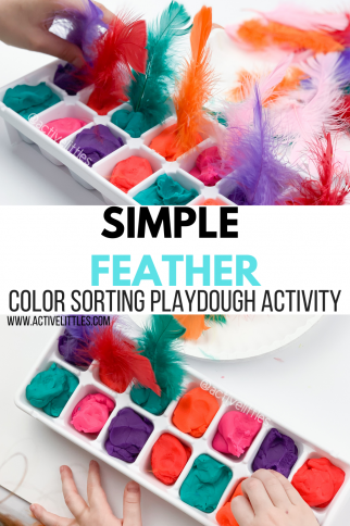 Simple Feather Color Sorting Playdough Activity