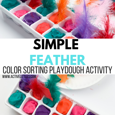 feather color sorting activity