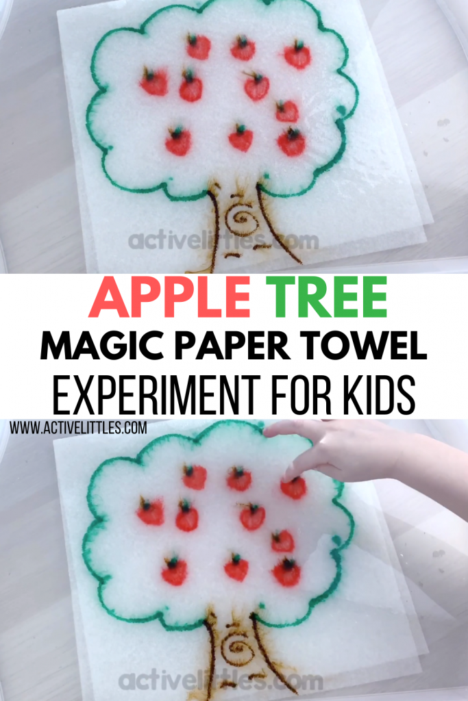 apple tree magic paper towel experiment for kids