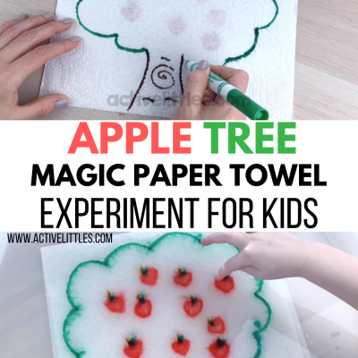 paper towel experiment for kids