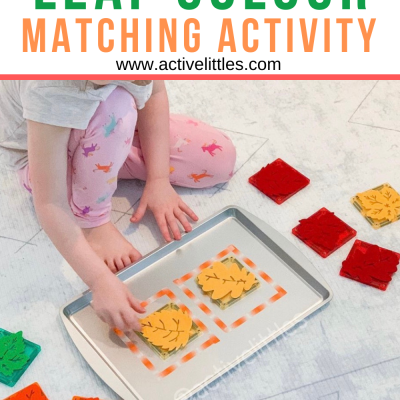 fall leaf colour match activity for kids