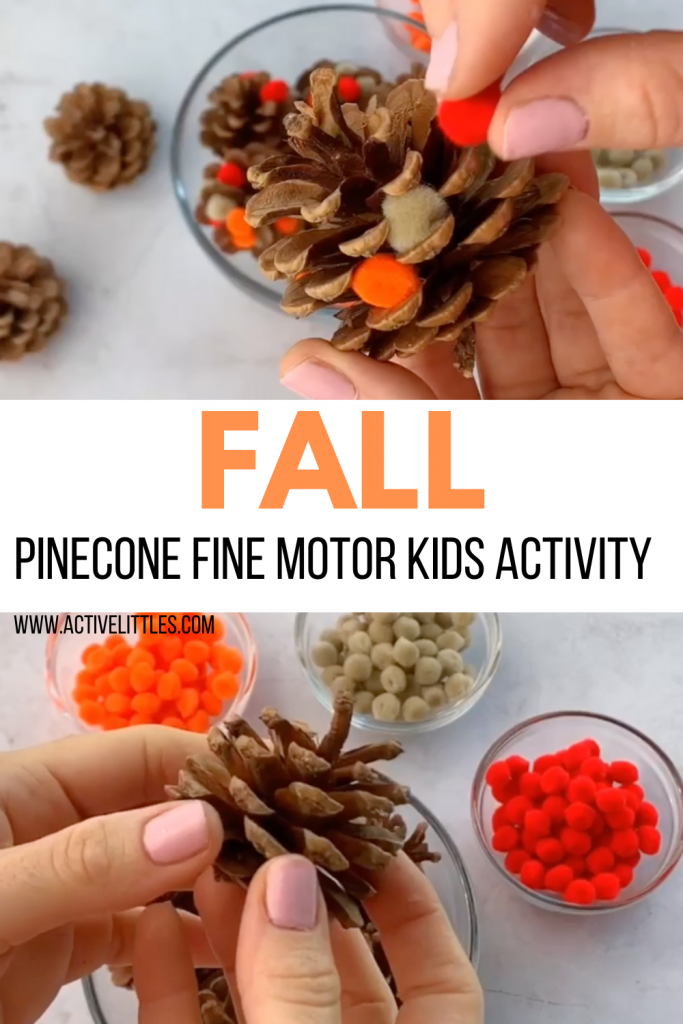 fall pinecone pom pom activity for kids