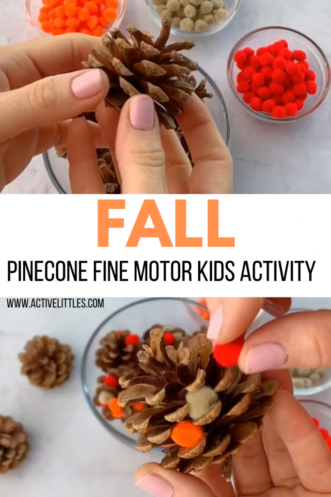 pom pom pinecone kids activity