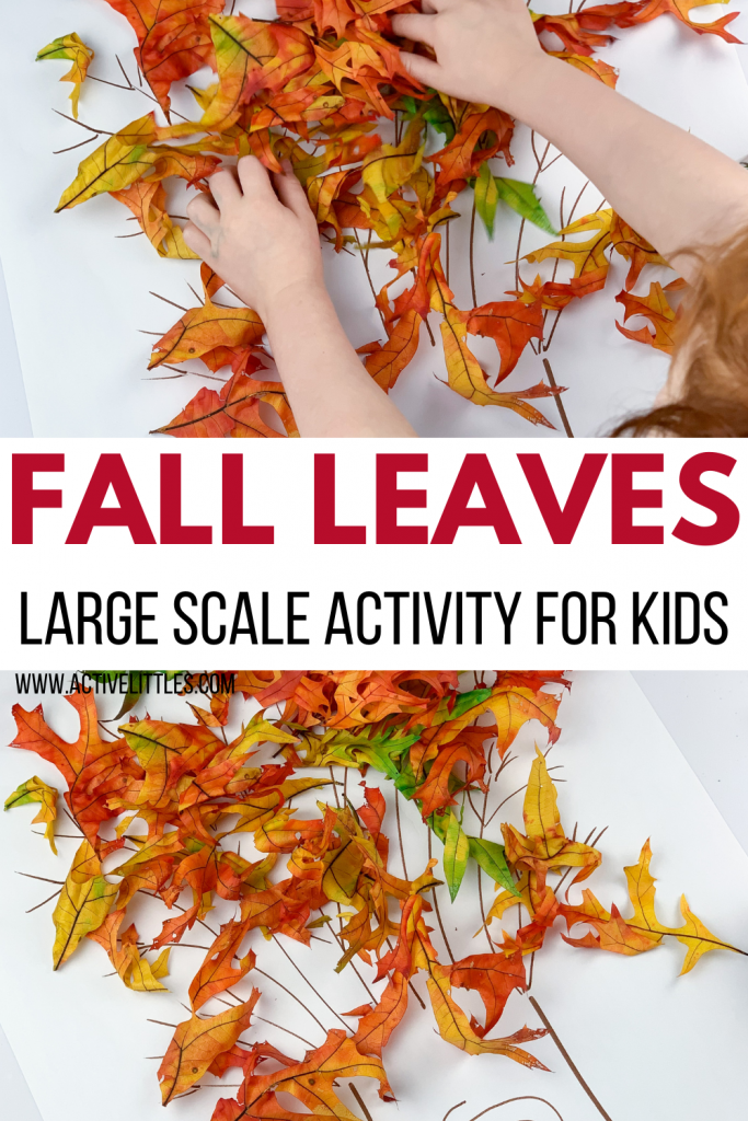 fall leaves large scale activity