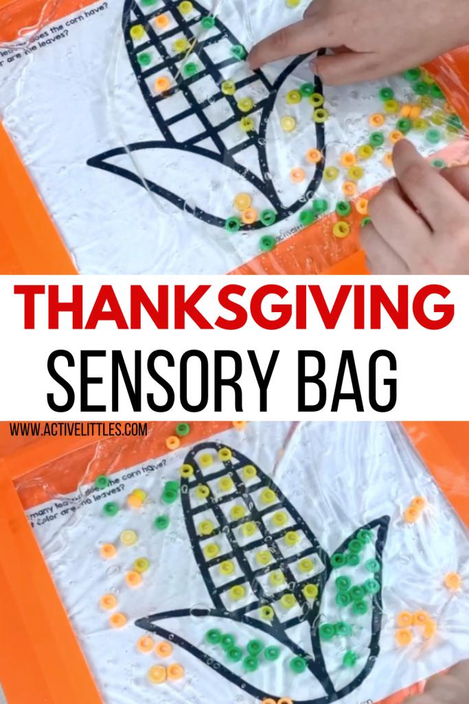 thanksgiving sensory bag