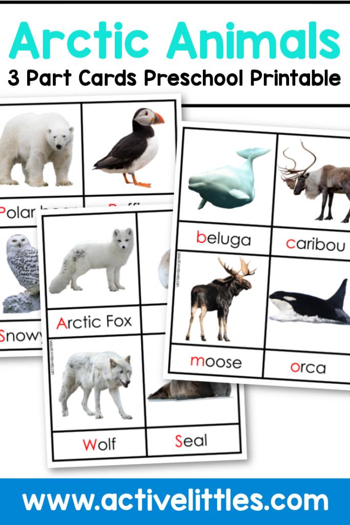 arctic animals preschool printable