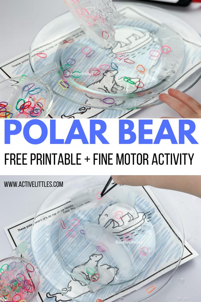 polar bear free printable for kids